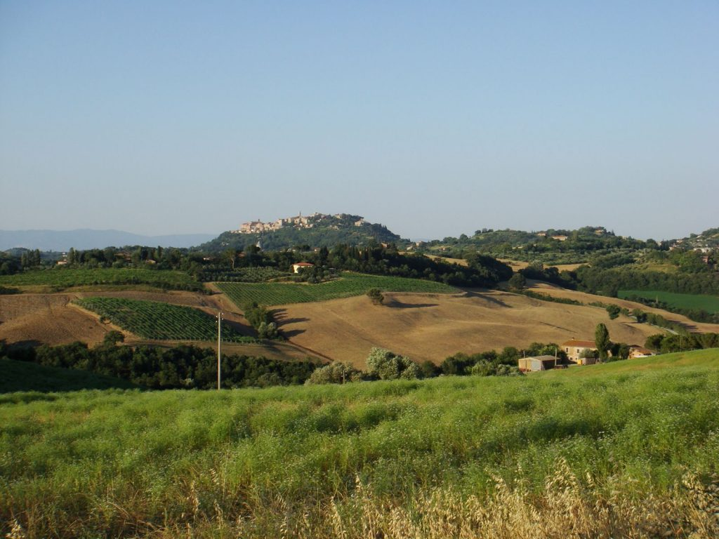 The Rolling Fields of Tuscany
