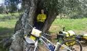 Cycling at your own pace in Apulia and take a nape in an olive tree