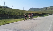 Cycling tours in Piedmont mainly follow quiet roads along vineyards
