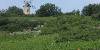 The itinerary takes you through countryside with beatiful windmills