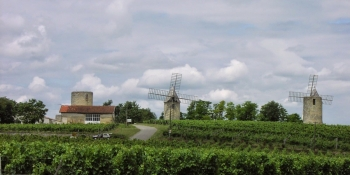 Biking through Bordeaux vineyards, the opportunity to discover some castles and windmills.