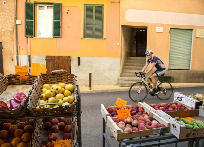 You will discover a wide variety of sceneries on this biking tour: local markets, lavender fields, vineyards, forests...