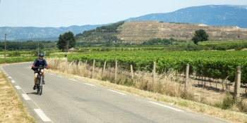 This cycling trips takes you through the most famous wine areas in Provence: Beaune de Venise, Plan de Dieu