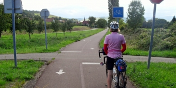 Alsace offers a large network of cycling itineraries through vineyards