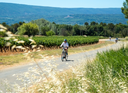 This self-guided cycling trip will take you to Provence's most famous vineyards