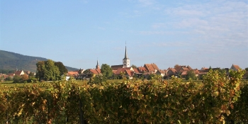 Your cycling ride in Alsace will take you through typical villages, Colmar among others