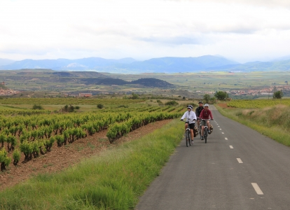 Biking in La Rioja will take you through vineyards and wonderful villages