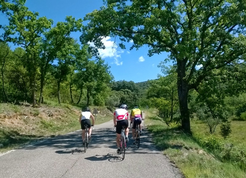 We also organize this cycling tours for groups on a guided basis