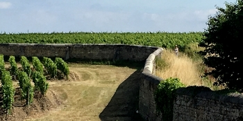 Cycling holidays in the Bordeaux vineyard area