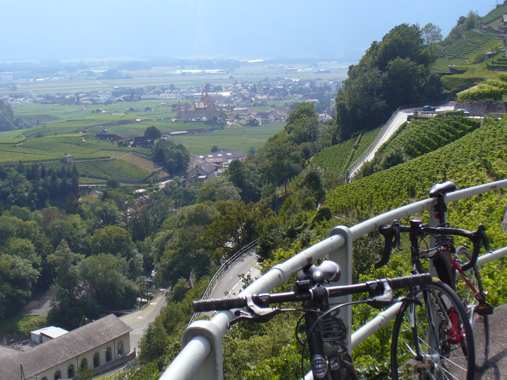 Scenic view of the vineyards of Lavaux